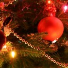 Новый год и новогоднее настроение веселые фото! ( 30 ФОТО)