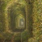В Канаде обнаружен таинственный туннель!